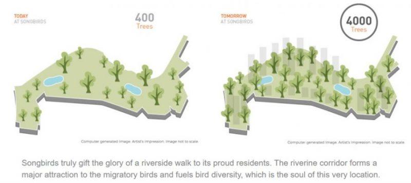4000 trees