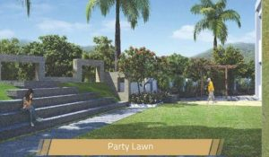 the-one-Party Lawn